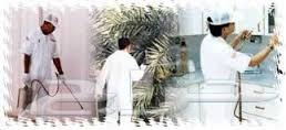 شركة مكافحة حشرات بالرياض 0552050702 الطارق