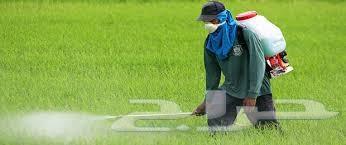 شركة رش مبيدات بالرياض العالمية