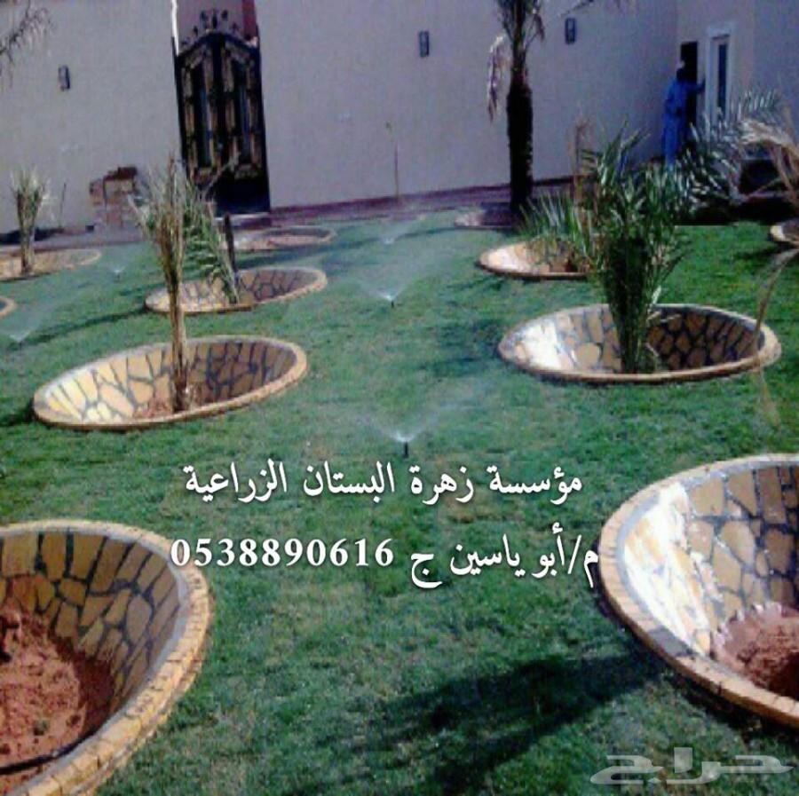 الحديقة المنزلية الصغيرة صور: تصميم و تنسيق الحدائق المنزلية بإحترافية