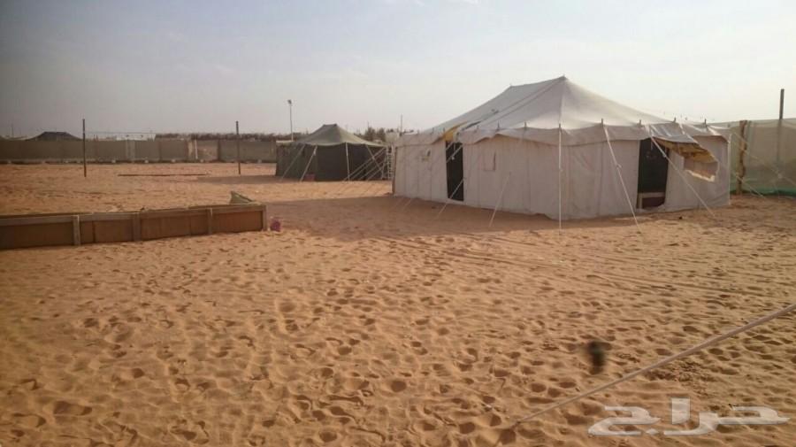 »  مخيم السعودية للاجار قسمين